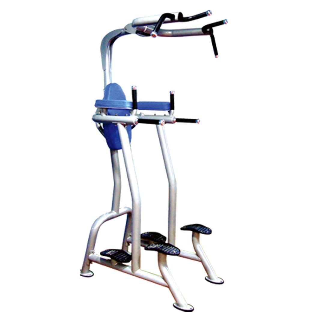 CM-236 Fitness Tree